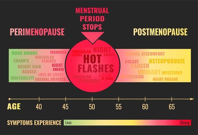 Infographic Menopause